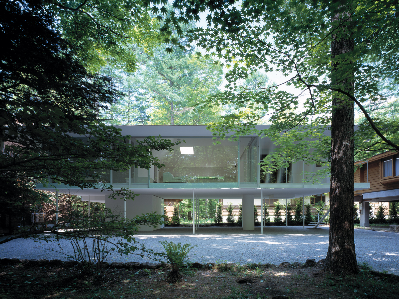 Forest Floor 森 床 Architecture Kengo Kuma And